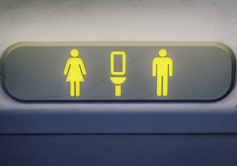 The lavatory sign on a Boeing 737 showing that the forward restroom is unoccupied.